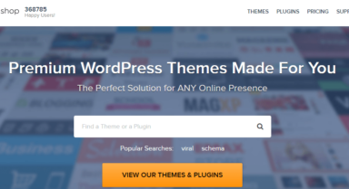 WordPress Themes – Why Are They Crucial?